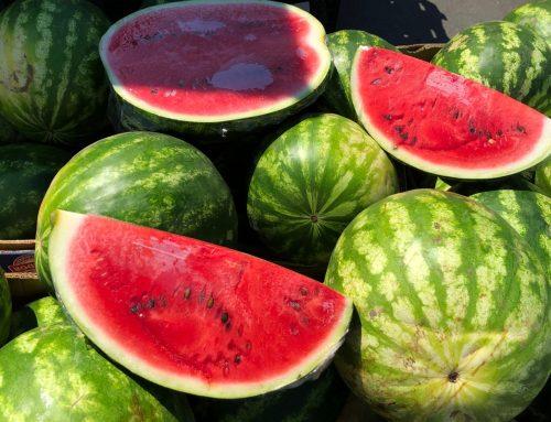 Ha már görögdinnye-szezon, akkor jöhetnek a statisztikák is
