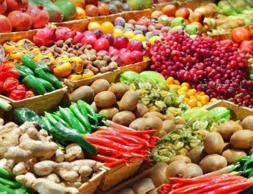 Jól működik az exportösztönzés az agrárágazatban